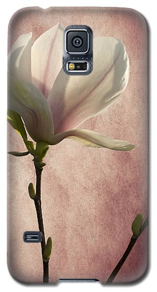 Galaxy S5 Case featuring the photograph Magnolia by Ann Lauwers