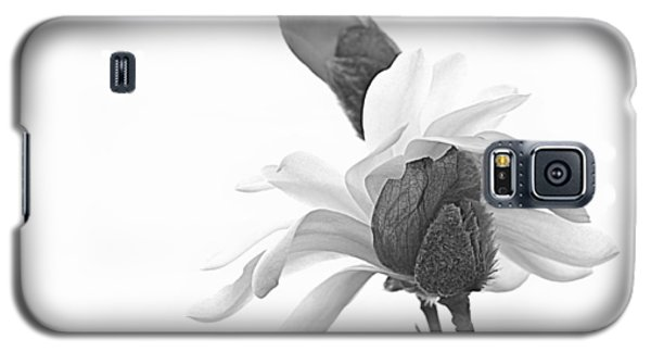 Galaxy S5 Case featuring the photograph Magnolia Bloom 1 by Tammy Schneider