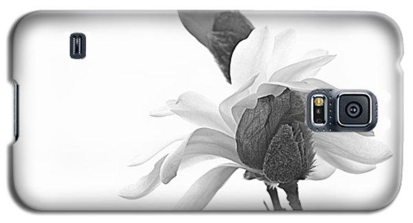 Magnolia Bloom 1 Galaxy S5 Case by Tammy Schneider