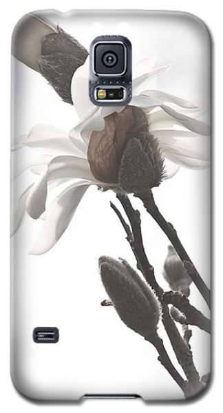 Galaxy S5 Case featuring the photograph Magnolia Bloom by Tammy Schneider