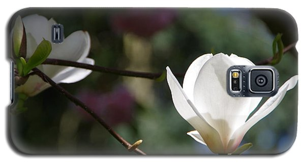 Magnolia Blossoms Galaxy S5 Case by Marilyn Wilson