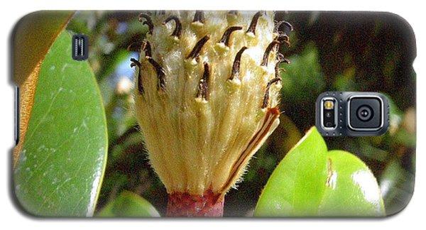 Magnolia Faith  Galaxy S5 Case