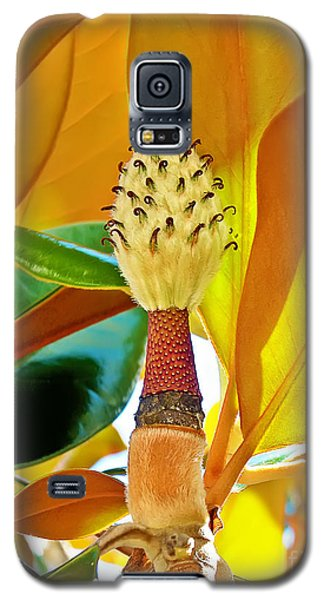 Galaxy S5 Case featuring the photograph Magnolia Flower by Olga Hamilton