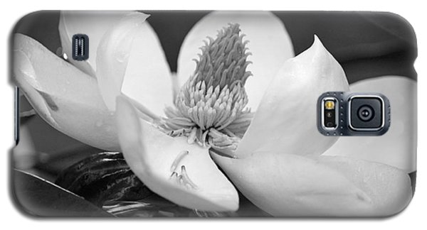 Magnolia In May - Black And White Galaxy S5 Case