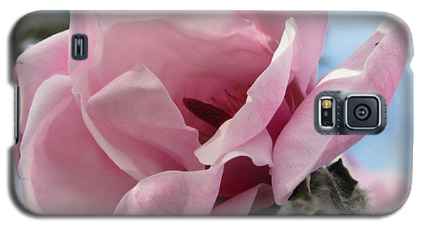 Magnolia In Spring Galaxy S5 Case by Jola Martysz