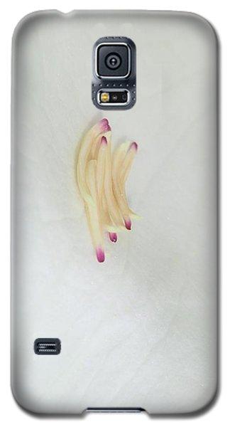 Magnolia Matches Galaxy S5 Case