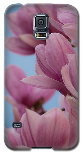 Galaxy S5 Case featuring the photograph Magnolia On Blue Sky by Rob Amend