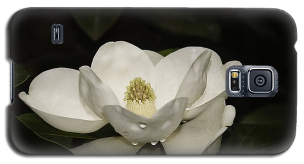 Galaxy S5 Case featuring the photograph Magnolia by Penny Lisowski