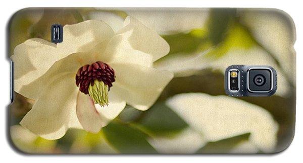 Magnolia Galaxy S5 Case by Rebecca Cozart