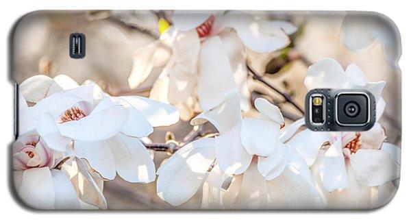 Magnolia Spring 2 Galaxy S5 Case by Susan Cole Kelly Impressions