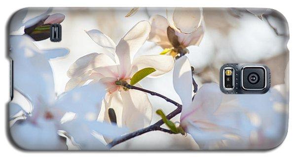 Magnolia Spring 3 Galaxy S5 Case by Susan Cole Kelly Impressions
