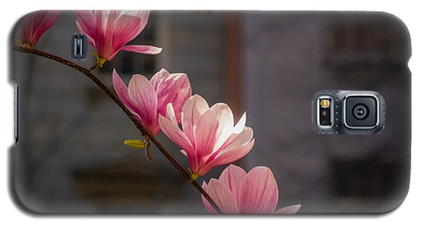 Galaxy S5 Case featuring the photograph Magnolia's Descent by Rob Amend