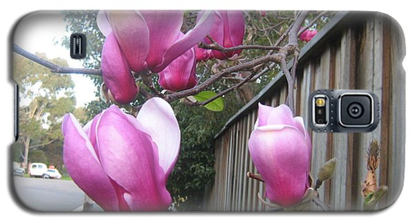 Galaxy S5 Case featuring the photograph Magnolias In Bloom by Leanne Seymour