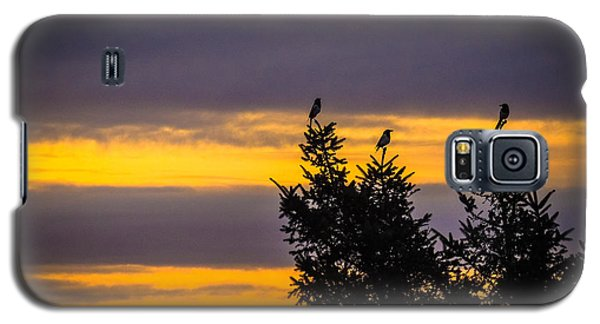 Magpies At Sunrise Galaxy S5 Case