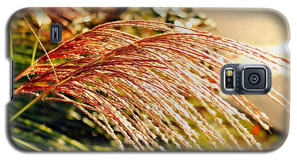 Maiden Seagrass Flower Head Galaxy S5 Case