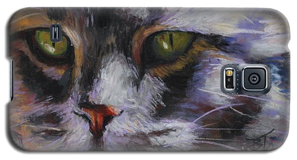 Main Coon Galaxy S5 Case by Billie Colson