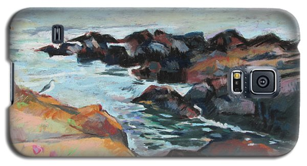 Maine Coast Rocks And Birds Galaxy S5 Case by Linda Novick
