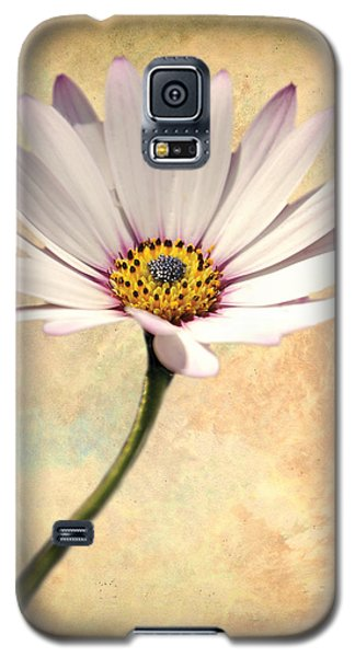 Maisy Daisy Galaxy S5 Case