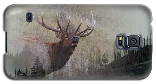 Galaxy S5 Case featuring the photograph Majestic Elk by Clare VanderVeen