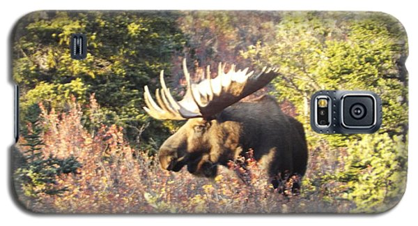 Majestic Moose Galaxy S5 Case