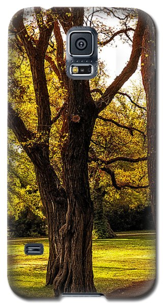 Galaxy S5 Case featuring the photograph Majestic by Nancy Marie Ricketts