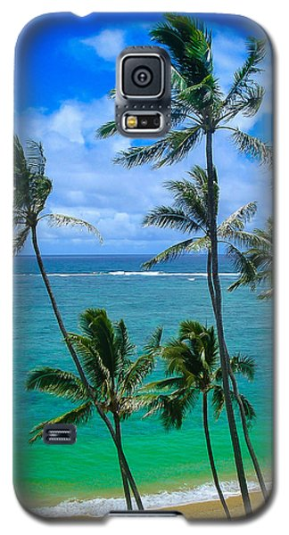 Majestic Palm Trees Galaxy S5 Case by TK Goforth