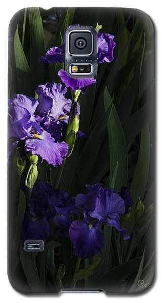 Majestic Spotlight Galaxy S5 Case