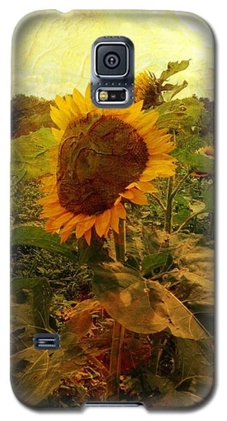 Majestic Sunflower  Galaxy S5 Case