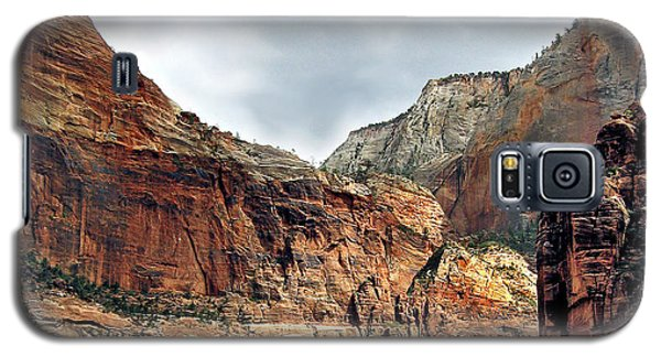 Galaxy S5 Case featuring the photograph Majestic by Sylvia Thornton