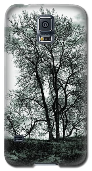Galaxy S5 Case featuring the photograph Majesty by Lauren Radke