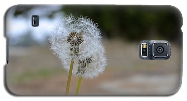 Galaxy S5 Case featuring the photograph Make A Wish by Alex King