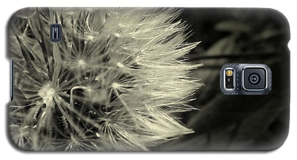 Galaxy S5 Case featuring the photograph Make A Wish by Clare Bevan