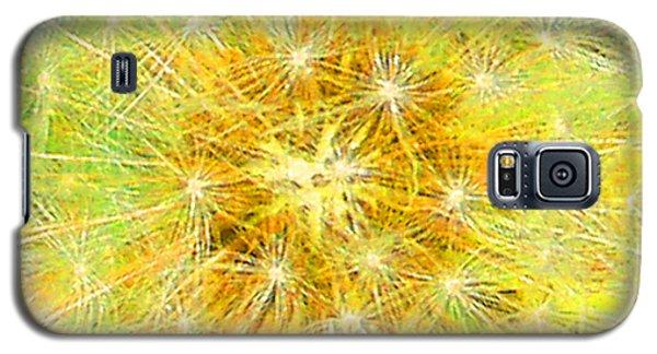 Make A Wish In Greenish Yellow Galaxy S5 Case
