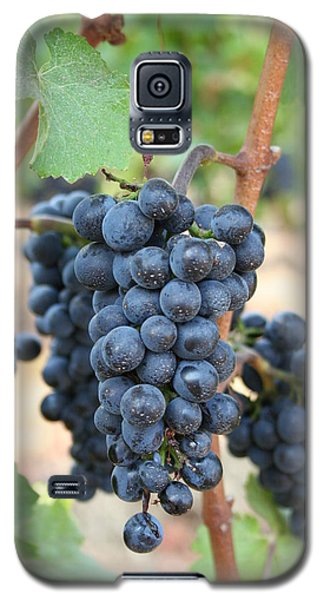 Galaxy S5 Case featuring the photograph Make Me Wine by Debra Kaye McKrill