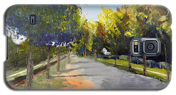 Maldon Victoria Australia Galaxy S5 Case by Pamela  Meredith