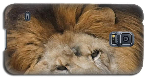Male African Lion Galaxy S5 Case