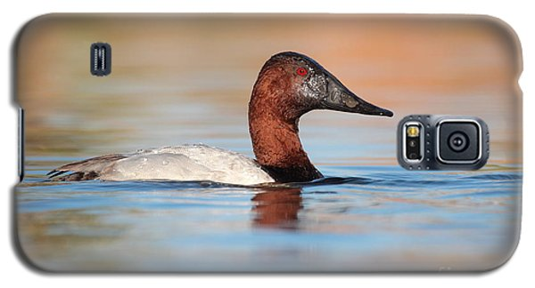 Male Canvasback Galaxy S5 Case