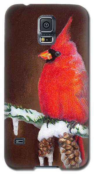 Male Cardinal Galaxy S5 Case