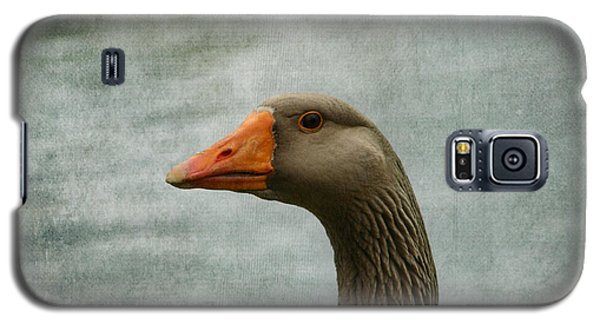 Male Graylag Goose Profile Galaxy S5 Case by Denyse Duhaime