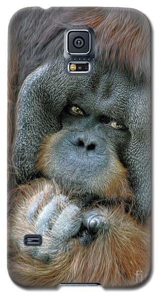 Galaxy S5 Case featuring the photograph Male Orangutan  by Savannah Gibbs