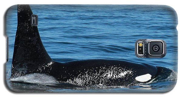 Galaxy S5 Case featuring the photograph Lonesome George Ca165  Male Orca Killer Whale In Monterey Bay California 2013 by California Views Mr Pat Hathaway Archives