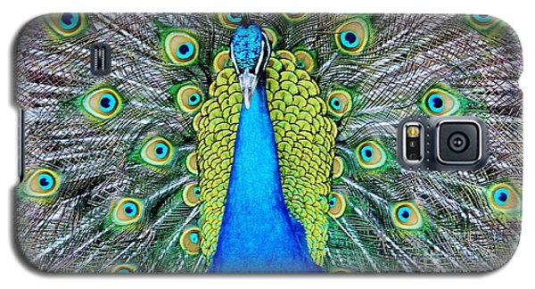 Male Peacock Galaxy S5 Case by Cynthia Guinn