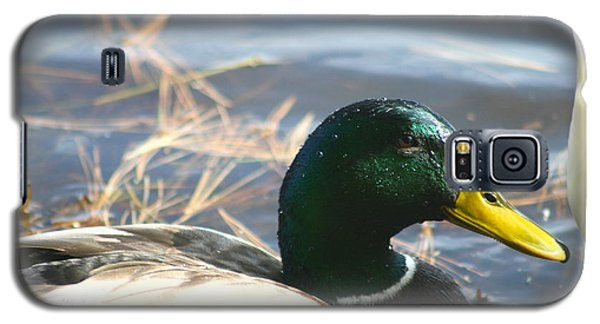 Galaxy S5 Case featuring the photograph Mallard Anas Platyrhynchos by Neal Eslinger