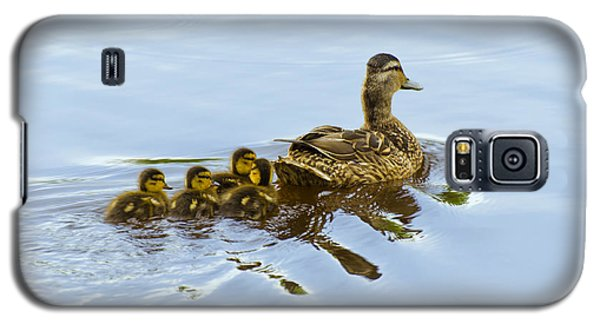 Mallard And Chicks  Galaxy S5 Case by Chris Flees