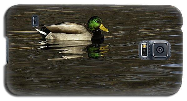 Mallard Drake Galaxy S5 Case