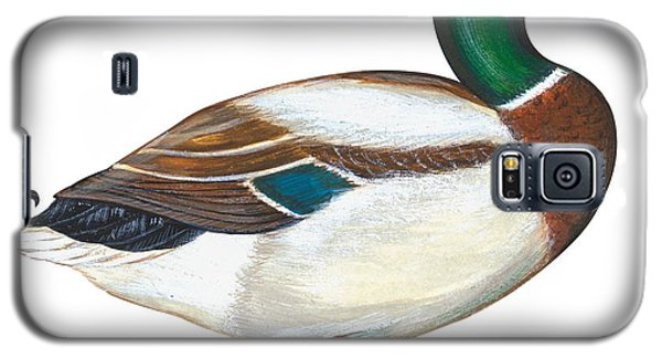 Audubon Galaxy S5 Case - Mallard Duck by Anonymous