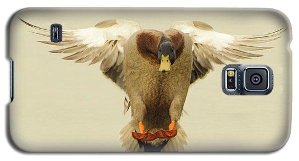 Mallard Duck Landing Galaxy S5 Case