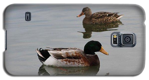 Mallard Ducks Reflecting Galaxy S5 Case by Robert Banach