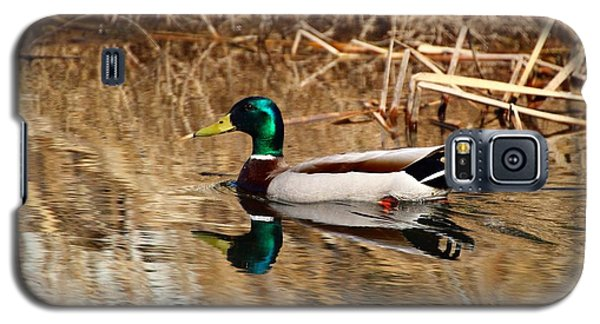 Galaxy S5 Case featuring the photograph Mallard Reflection by Lynn Hopwood