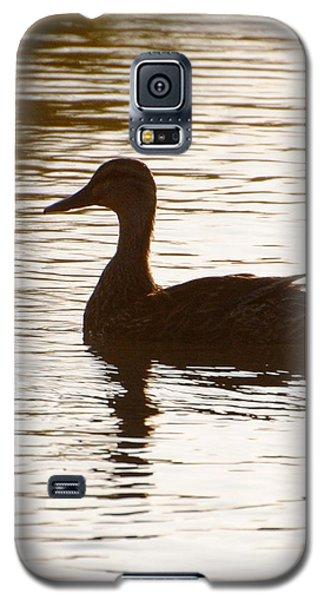 Mallard Silhouette Galaxy S5 Case